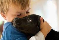 Темная сторона общения с домашними животными