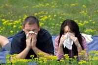 Причины аллергии и как с ней справиться